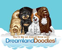 Dreamland Doodles
